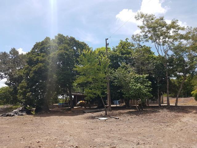 Sitio no Rio Manso - Foto 9