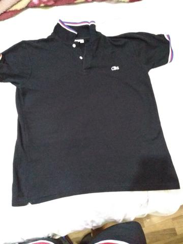bc2917603b8be Camiseta polo da lacoste original - Roupas e calçados - Jardim Santa ...