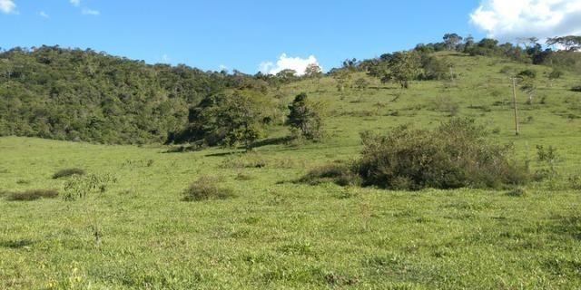 Fazenda - Foto 4