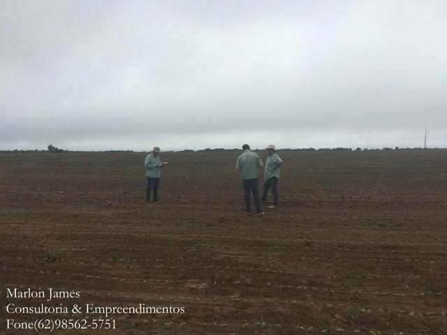 Fazenda em Mundo Novo! - Foto 11