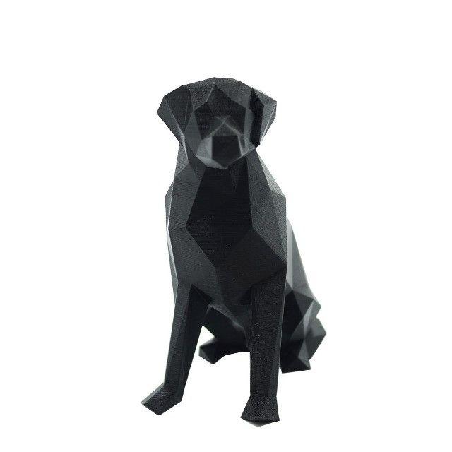 Labrador Geométrico 3D - Foto 2