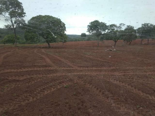 Fazenda em Guiratinga 680Hectares - Foto 9