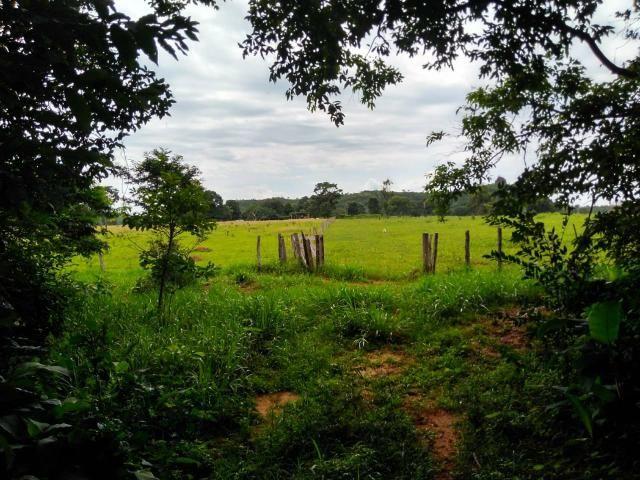 Fazenda em Guiratinga 680Hectares - Foto 3