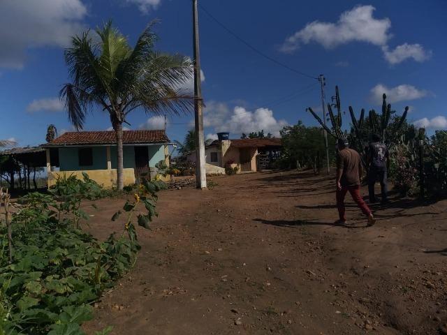 Propriedade de 8 hectares-toda cercada-com 2 casas, a 5 km de Apoti-PE - Foto 2