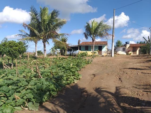 Propriedade de 8 hectares-toda cercada-com 2 casas, a 5 km de Apoti-PE - Foto 4