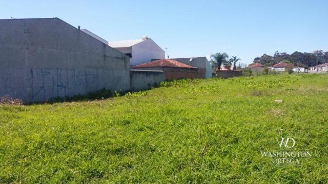 Terreno à venda, 2952 m² por r$ 2.300.000,00 - afonso pena - são josé dos pinhais/pr - Foto 14