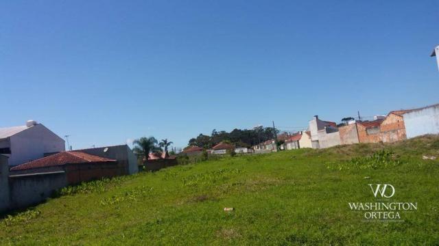 Terreno à venda, 2952 m² por r$ 2.300.000,00 - afonso pena - são josé dos pinhais/pr - Foto 7