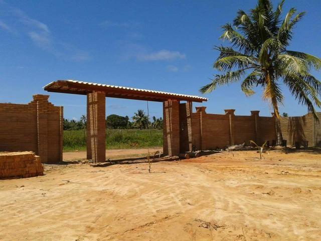 Terreno em Massagueira - Foto 2