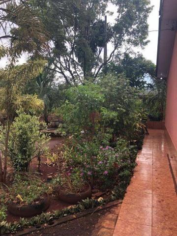 Chácara com 3 dormitórios à venda, 10000 m² por R$ 910.000,00 - Marialva - Marialva/PR - Foto 12