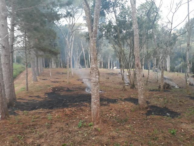 Urgente!!!Torro terreno proximo do asfalto br 116 1km - Foto 5