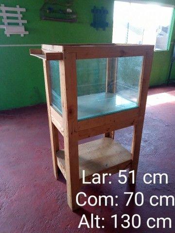 Aquário - Foto 2