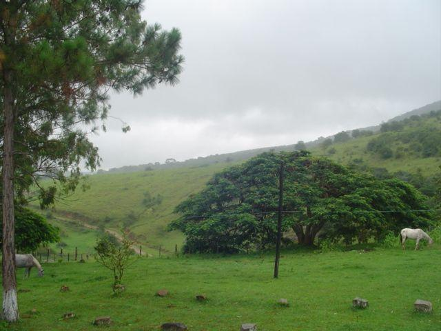 Vale Jiquiriçá-Fazenda - 800 Tarefas, analisa troca p\imóvel em Salvador - Foto 5