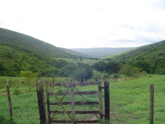 Vale Jiquiriçá-Fazenda - 800 Tarefas, analisa troca p\imóvel em Salvador - Foto 11