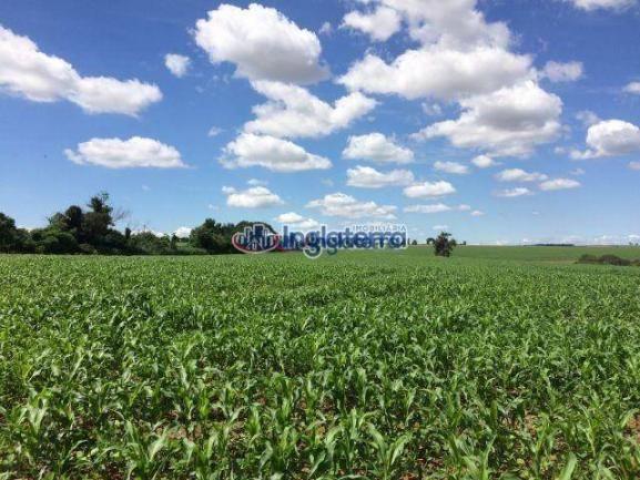 Fazenda à venda, 4982600 m² por R$ 18.000.000,00 - Centro - Santa Fé/PR - Foto 6
