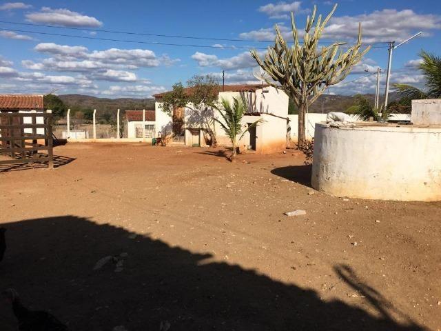 Ótima propriedade de 377 hectares,em Jataúba-PE, por apenas R$ 650 mil - Foto 14