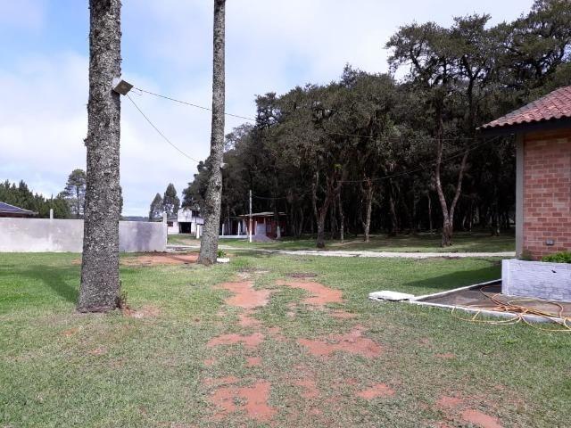 Chácara de cinema/piscina/825m2/área construída/600m/BR 376/ 35km de/SJP/R$1.335.000, - Foto 10