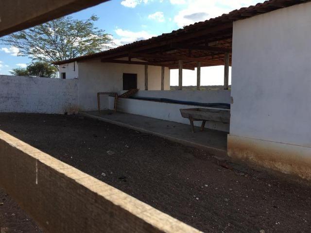 Ótima propriedade de 377 hectares,em Jataúba-PE, por apenas R$ 650 mil - Foto 19