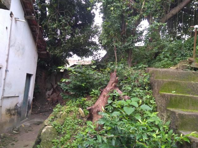 Casa com terreno 25 x 50 na Avenida Beberibe - Foto 7