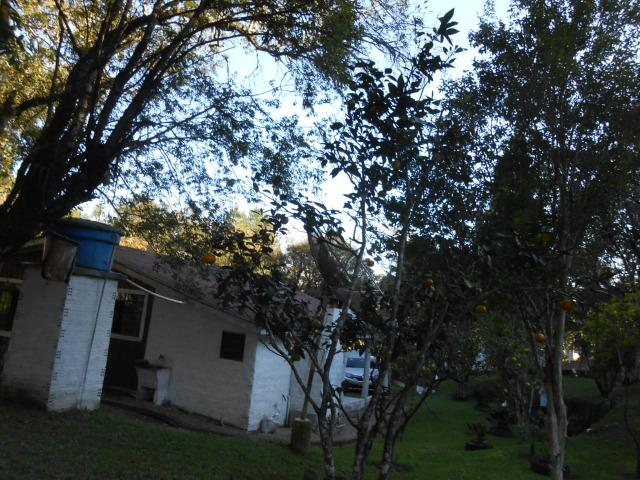 Chácara - Vendo - Foto 7