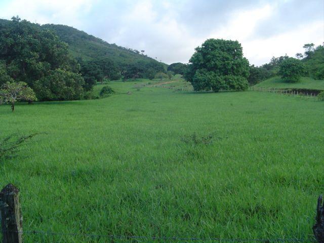 Vale Jiquiriçá-Fazenda - 800 Tarefas, analisa troca p\imóvel em Salvador - Foto 18
