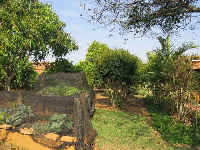 REF 3220 Chácara 2000 m², 4 dormitórios, local maravilhoso, Imobiliária Paletó - Foto 20