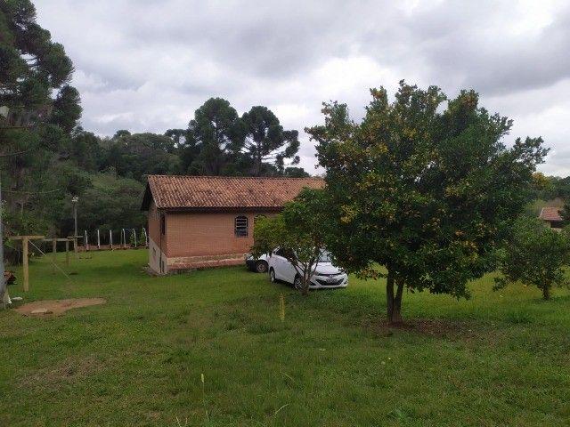 Chácara Araucária Estrada de Roça Nova Tomaz coelho - Foto 4