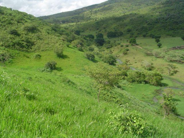 Vale Jiquiriçá-Fazenda - 800 Tarefas, analisa troca p\imóvel em Salvador - Foto 8
