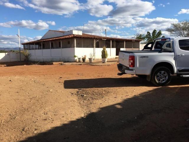 Ótima propriedade de 377 hectares,em Jataúba-PE, por apenas R$ 650 mil - Foto 2