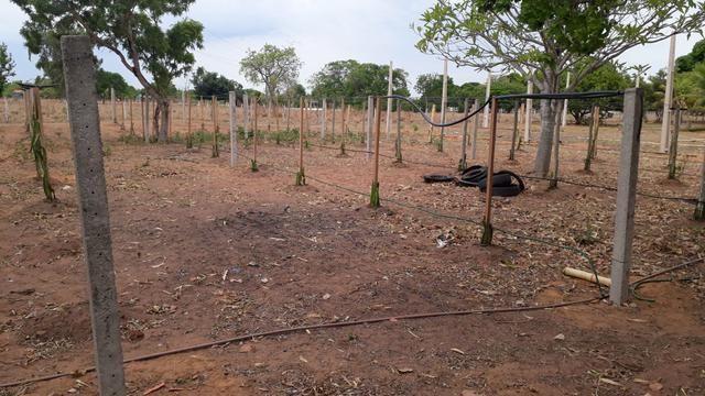 Chacara condominio rio Bandeira 3 hectares - Foto 8
