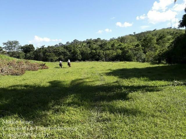 Fazenda em Niquelandia! - Foto 13