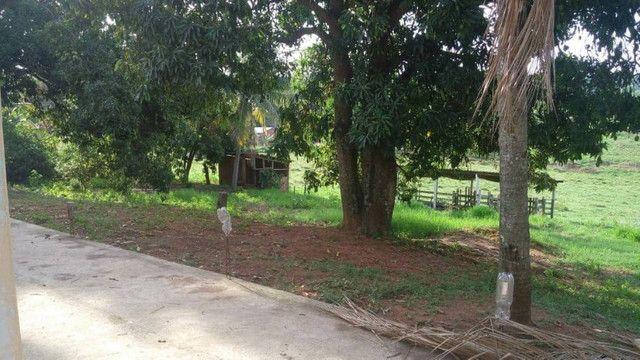 Chacara em mirandópolis vendo /troco leia anuncio - Foto 6