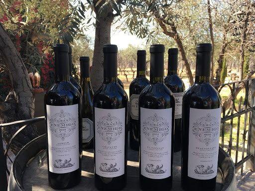 Vinho da Argentina Gran Enemigo Blend - Foto 3
