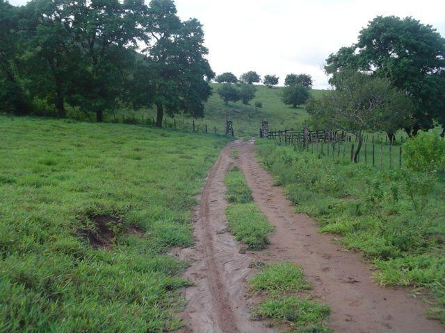Vale Jiquiriçá-Fazenda - 800 Tarefas, analisa troca p\imóvel em Salvador - Foto 10