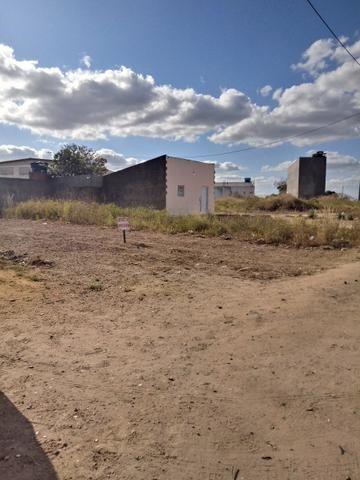 Vendo terreno medindo 7x20 todo plano - Foto 4