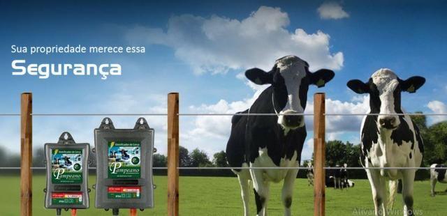 Eletrificador Rural Pampeano Pa300 12V 45KM(Solar ou Bateria) - Foto 6