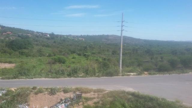 Vitória de Sto Antão=Vend. 155 mil terreno com 3.2 Hect. na BR-232 = Beira da Pista
