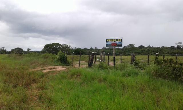 Fazenda em Roraima -São Luiz - Foto 4