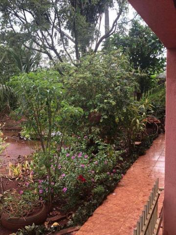 Chácara com 3 dormitórios à venda, 10000 m² por R$ 910.000,00 - Marialva - Marialva/PR - Foto 19