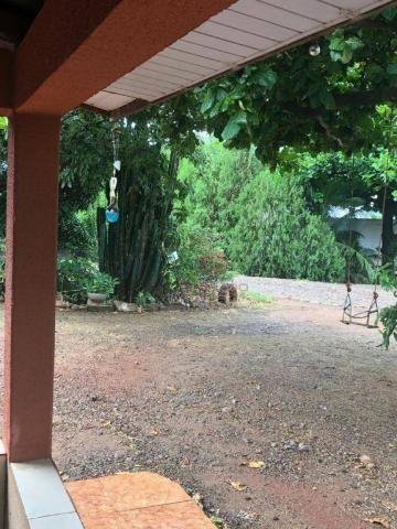 Chácara com 3 dormitórios à venda, 10000 m² por R$ 910.000,00 - Marialva - Marialva/PR - Foto 11