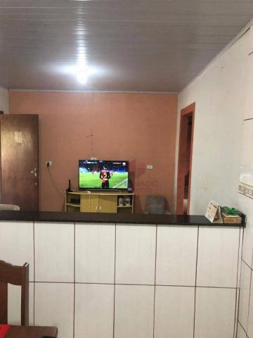 Chácara com 3 dormitórios à venda, 10000 m² por R$ 910.000,00 - Marialva - Marialva/PR - Foto 20
