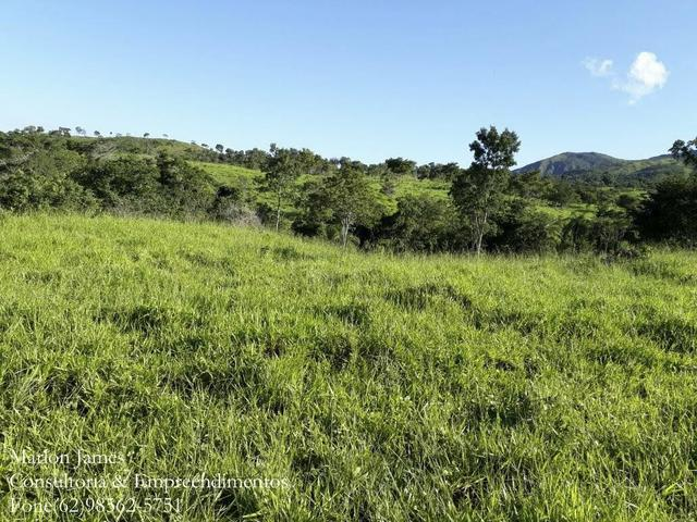 Fazenda em Niquelandia! - Foto 7