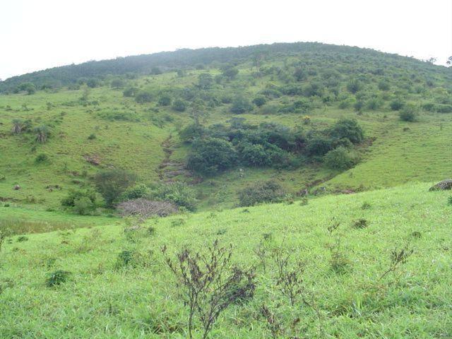 Vale Jiquiriçá-Fazenda - 800 Tarefas, analisa troca p\imóvel em Salvador - Foto 15
