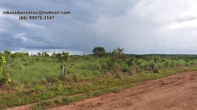 Fazenda 1.000 hectares rejiao de canarana mt