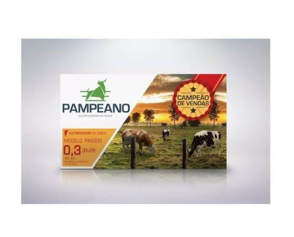 Eletrificador Rural Pampeano Pa300 12V 45KM(Solar ou Bateria) - Foto 2