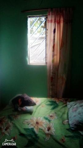 Vendo uma casa em Matá dê são João - Foto 7