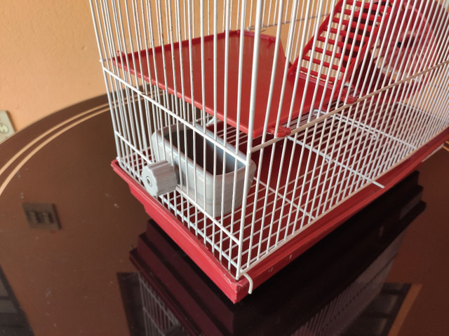 Gaiola para hamster dois andares  - Foto 3