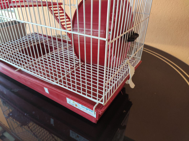 Gaiola para hamster dois andares  - Foto 4