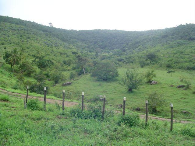 Vale Jiquiriçá-Fazenda - 800 Tarefas, analisa troca p\imóvel em Salvador - Foto 17