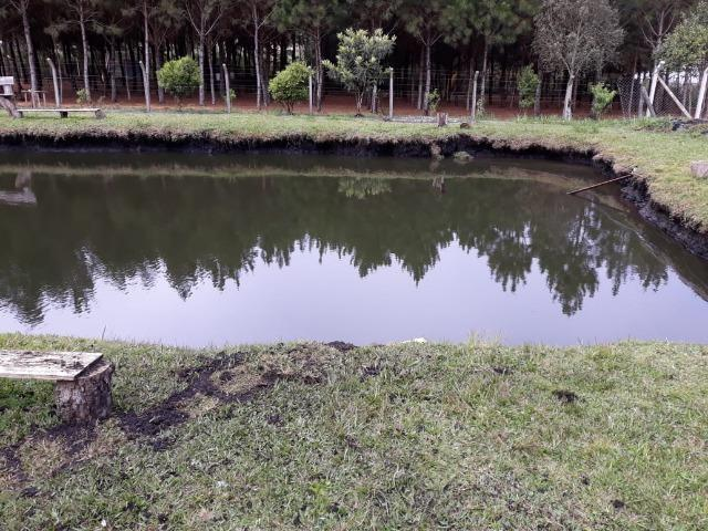 Chácara de cinema/piscina/825m2/área construída/600m/BR 376/ 35km de/SJP/R$1.335.000, - Foto 16