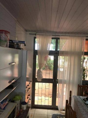 Chácara com 3 dormitórios à venda, 10000 m² por R$ 910.000,00 - Marialva - Marialva/PR - Foto 8